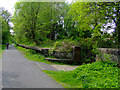 NS4062 : National Cycle Network Route 7 by Thomas Nugent