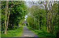 NS3760 : National Cycle Network Route 7 by Thomas Nugent