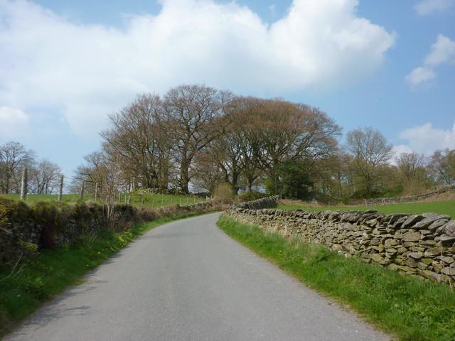 Road near Mungeon Farm