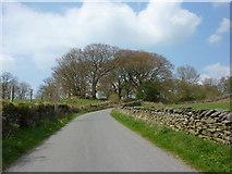 SD3683 : Road near Mungeon Farm by Alexander P Kapp
