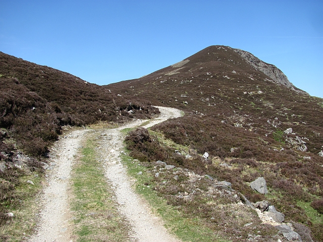 Road to the Tarf