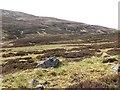 NN9678 : Fèith an Dùin by Richard Webb