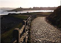 NU1341 : Walkway, Lindisfarne Castle by wfmillar
