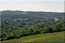 TQ2652 : Reigate Hill by Ian Capper