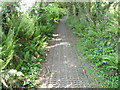 SN1301 : Part of the Pembrokeshire Coast path approaching Tenby by Jeremy Bolwell