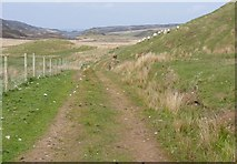 NR3143 : Track down Glen Astle, Islay by Becky Williamson