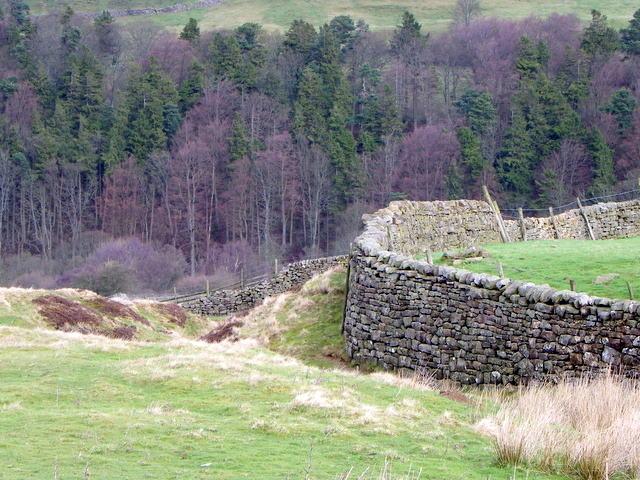 Drystone wall near Raw Bank