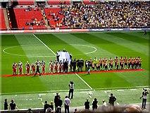 TQ1985 : FA Carlsberg Trophy final, 7 May 2011 by Stanley Howe