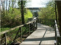 NS3882 : Boardwalk behind the National Park Gateway Centre by Lairich Rig