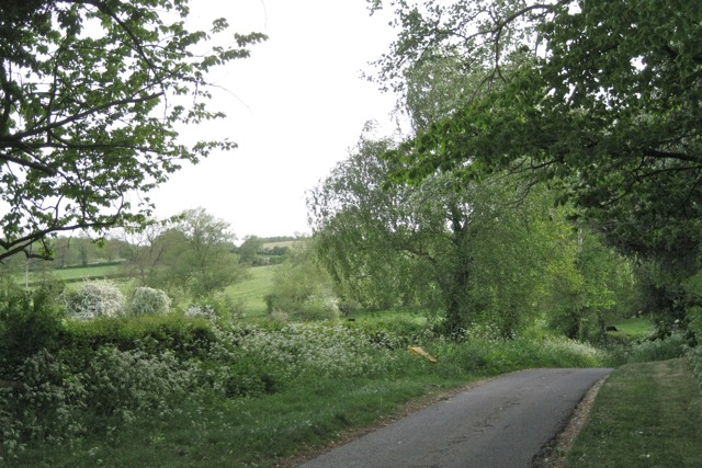 Rookery Lane drops down to the Tapster Brook