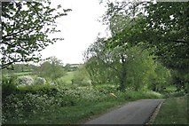 SP1866 : Rookery Lane drops down to the Tapster Brook by Robin Stott
