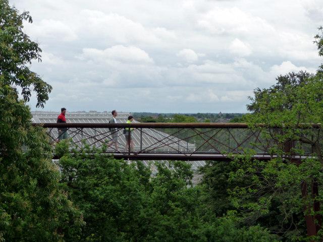 Xstrata Tree Walk, Kew Gardens