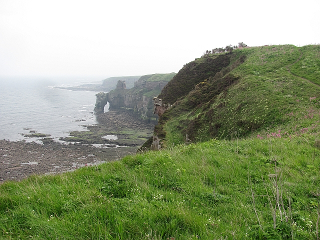 Berwickshire Coast Path