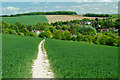 TQ5365 : Footpath to Eynsford, Kent by Peter Trimming