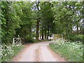 TG0524 : The entrance to Old Hall Farm by Adrian Cable