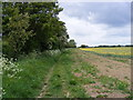 TM2955 : Footpath to Thong Hall Road by Adrian Cable