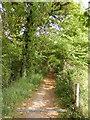 TM2547 : Footpath to Martlesham Creek by Geographer