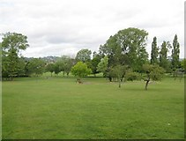 TQ1885 : Wembley: King Edward VII Park by Nigel Cox