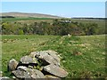NS3085 : Old dry-stone wall by Lairich Rig