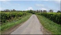 ST2415 : Farm Lane by Derek Harper