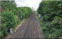 TQ2677 : London : Chelsea - Railway Line by Lewis Clarke
