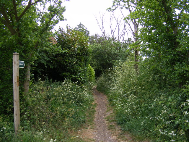Little Lane Bridleway to Broad Road