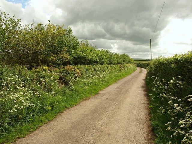 Curriton Lane