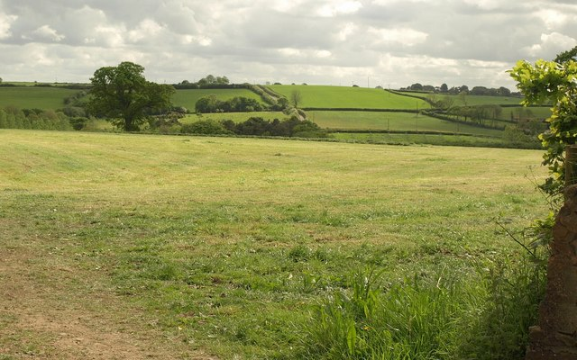 Field at Leecross Gate