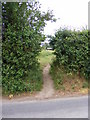 TM2956 : Footpath to Dallinghoo Road by Adrian Cable