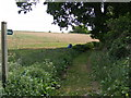 TM3057 : Bridleway to the B1078 Main Road by Adrian Cable
