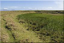 NR3587 : Small lochan on Oronsay by Tom Richardson