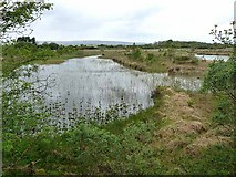 M2072 : Ponds at Carrowkilleen by Oliver Dixon