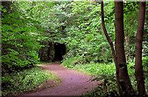 J3480 : Path, Glas-na-Bradan, Newtownabbey (2) by Albert Bridge