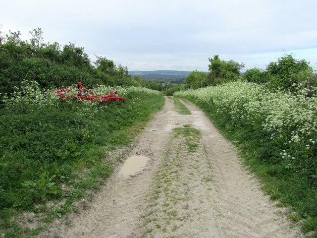 Track below Hill Barn