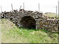 NY9139 : Limekiln in roadside wall, West Rigg by Andrew Curtis