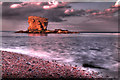 NZ3476 : Collywell Bay Stack by Paul Appleby