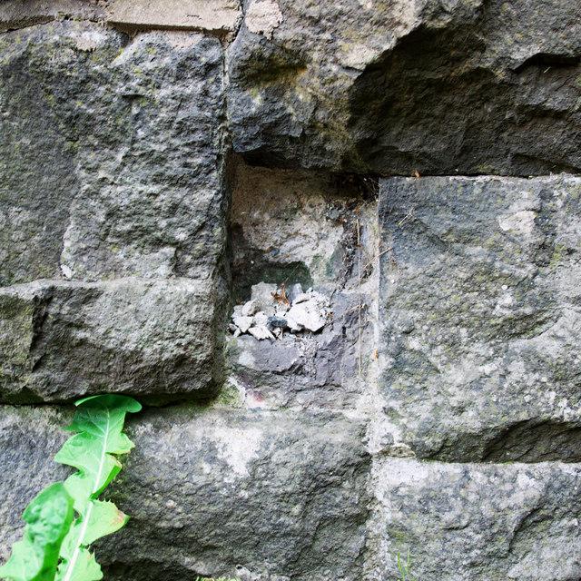 (Former) Flush Bracket, Templepatrick