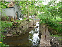 NT5575 : Rural East Lothian : The Mill Lade at Sandy's Mill (River Tyne) by Richard West