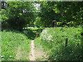 TL9097 : Peddars Way by Keith Evans