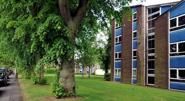 Nos 36-38 Windsor Park, Belfast (1)