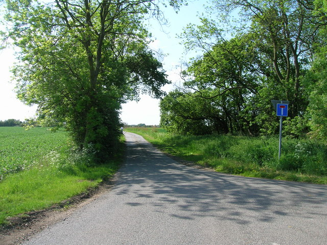 Newlands Lane towards Little Humber by JThomas