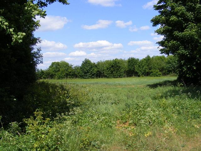 Field entrance off the Bridleway to Deadman's Lane