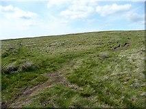 SE0030 : Cross-tracks near High Brown Knoll, Wadsworth by Humphrey Bolton