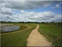SE6350 : Path to Field Lane by DS Pugh