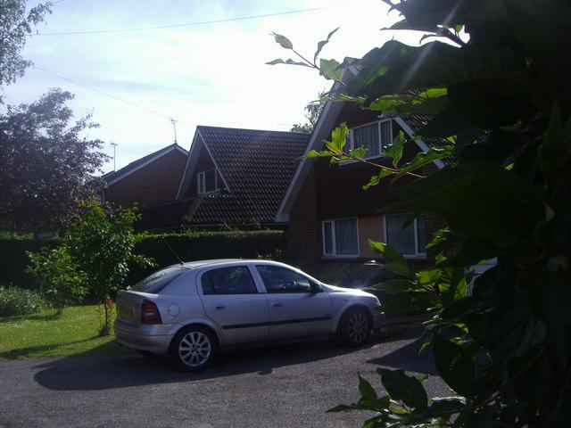 Modern bungalows on Binfield Road