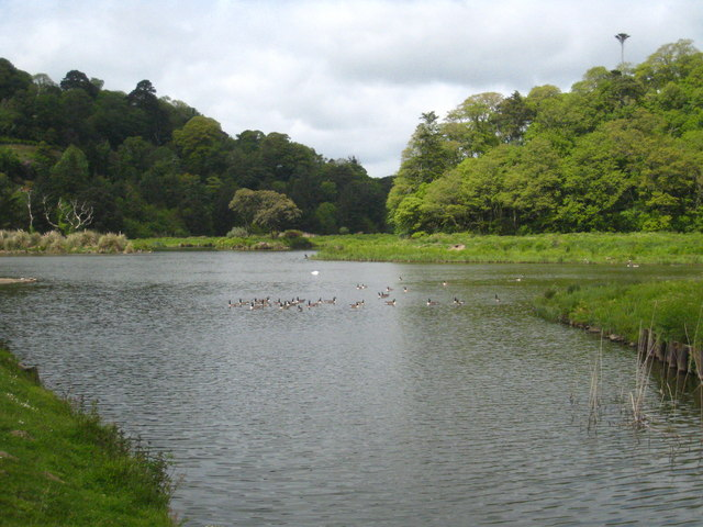 The lake at Caerhays Castle