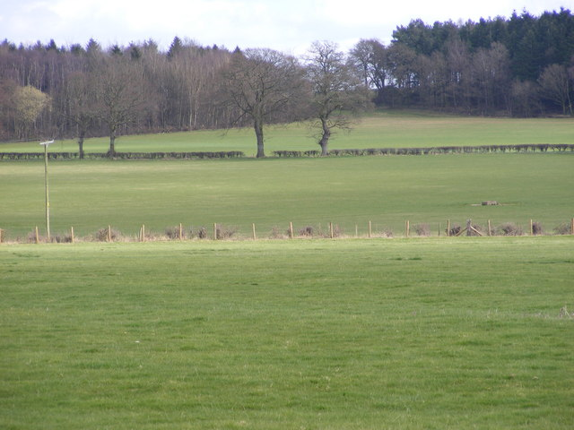 View to New Coppice