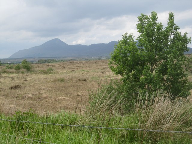 Rough pasture near Carrowkennedy, looking towards Croag Patrick
