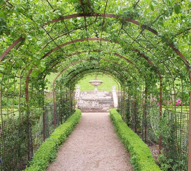 Pergola, Rose Garden, Tyntesfield