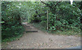 TQ3996 : Footpath Entrance, Lippitts Hill, High Beach by Roger Jones